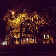 Frolicking in Savannah