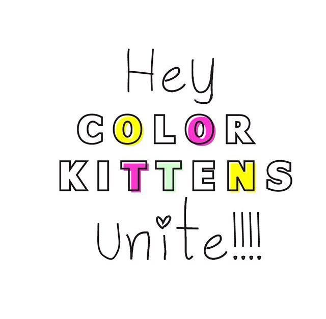 shop rkitekt color kitten